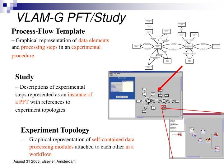 VLAM-G PFT/Study