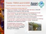 trieste twas and icgeb joint programme on abiotic stress in plants1