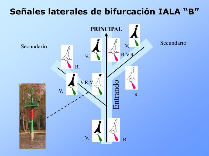 """Señales laterales de bifurcación IALA """"B"""""""