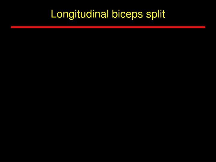 Longitudinal biceps split