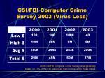 csi fbi computer crime survey 2003 virus loss