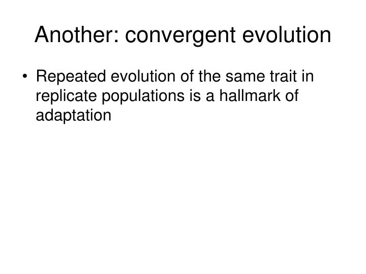 Another: convergent evolution