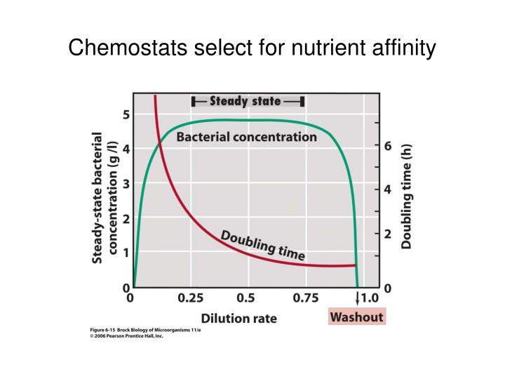 Chemostats select for nutrient affinity