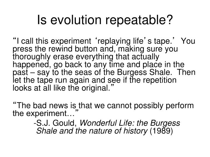 Is evolution repeatable?