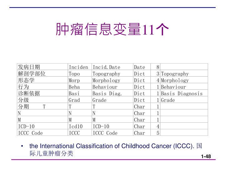 肿瘤信息变量