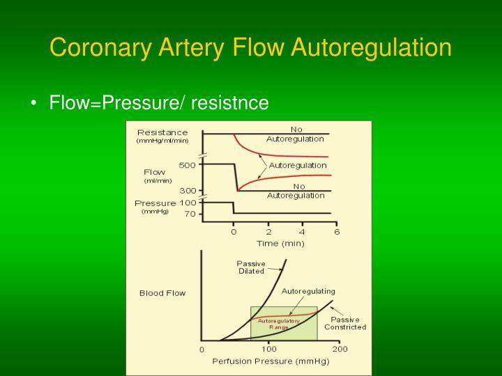 Coronary Artery Flow Autoregulation