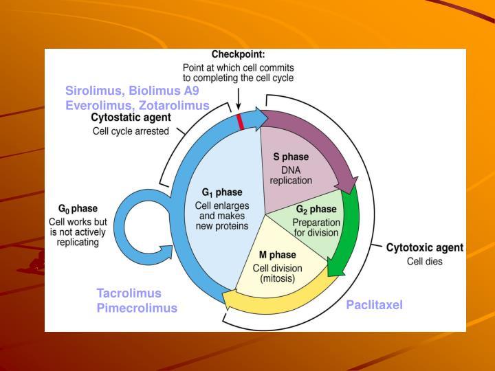 Sirolimus, Biolimus A9