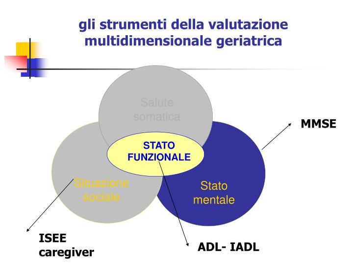 gli strumenti della valutazione multidimensionale geriatrica