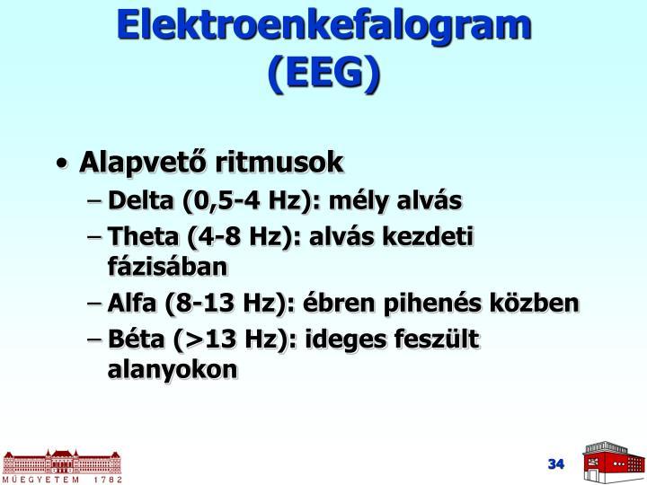 Elektroenkefalogram (EEG)