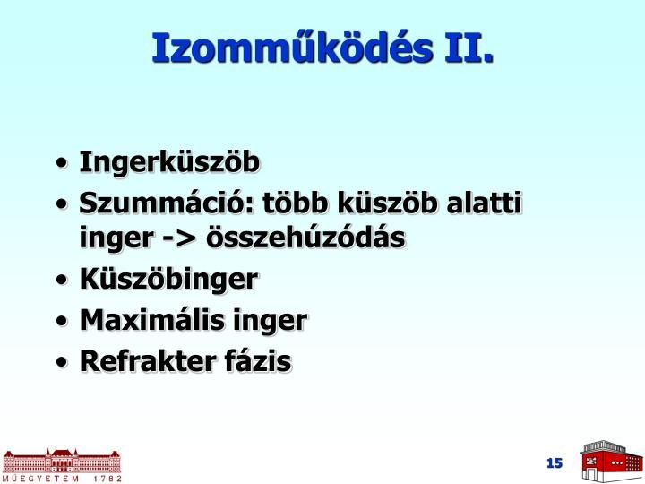 Izomműködés II.