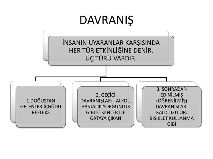 DAVRANIŞ