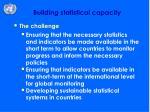 building statistical capacity