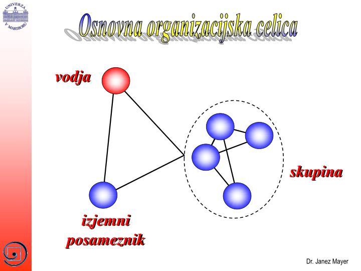 Osnovna organizacijska celica