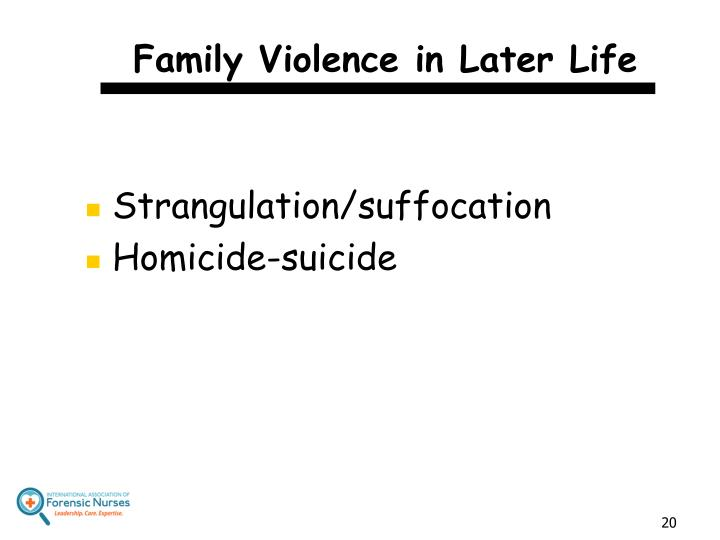 Family Violence in Later Life