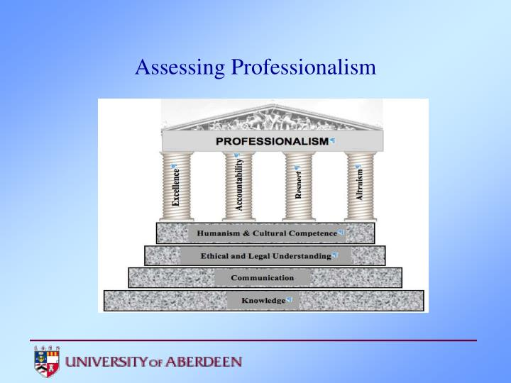 Professionalism Essays