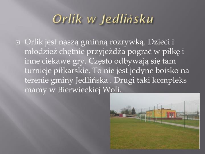 Orlik w Jedlińsku