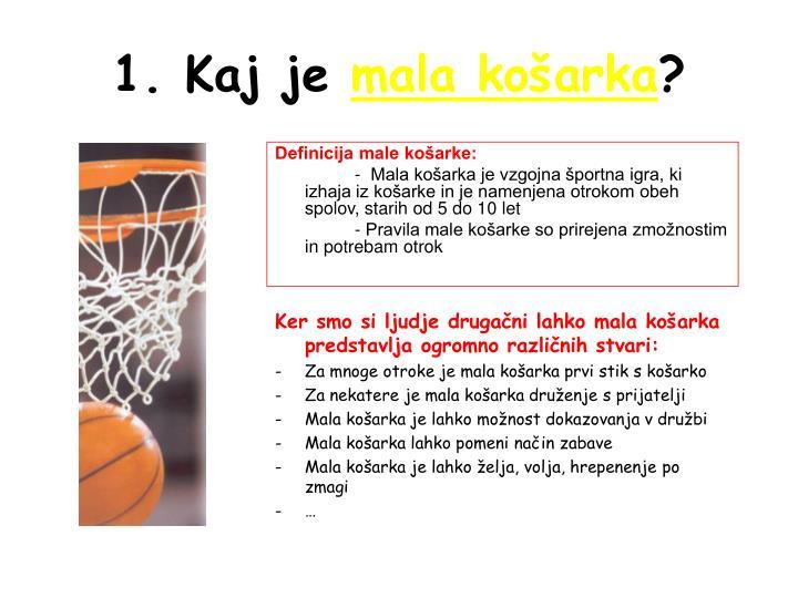 Definicija male košarke: