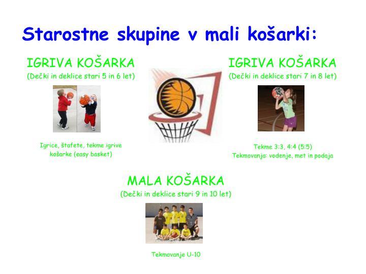 Starostne skupine v mali košarki: