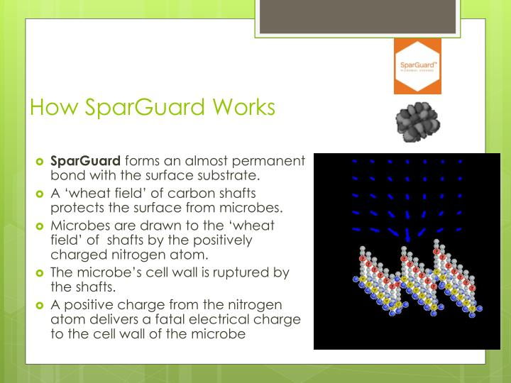 How SparGuard Works