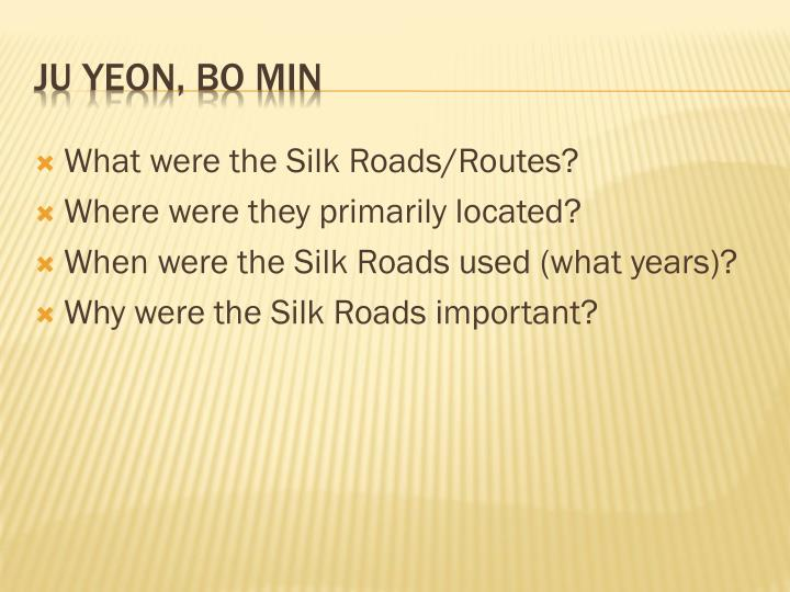 What were the Silk Roads/Routes?