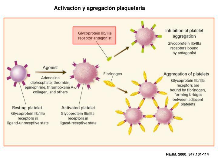 Activación y agregación plaquetaria