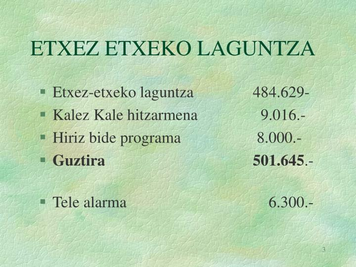 ETXEZ ETXEKO LAGUNTZA