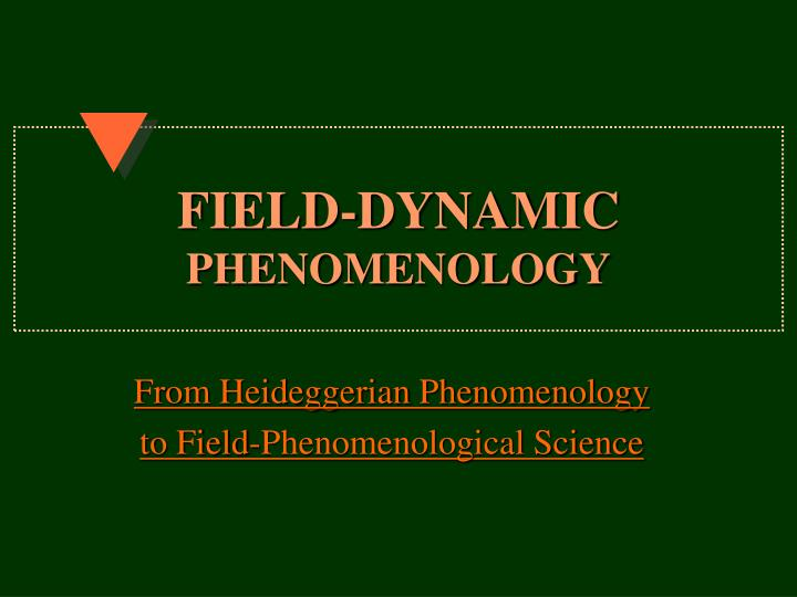 Field dynamic phenomenology