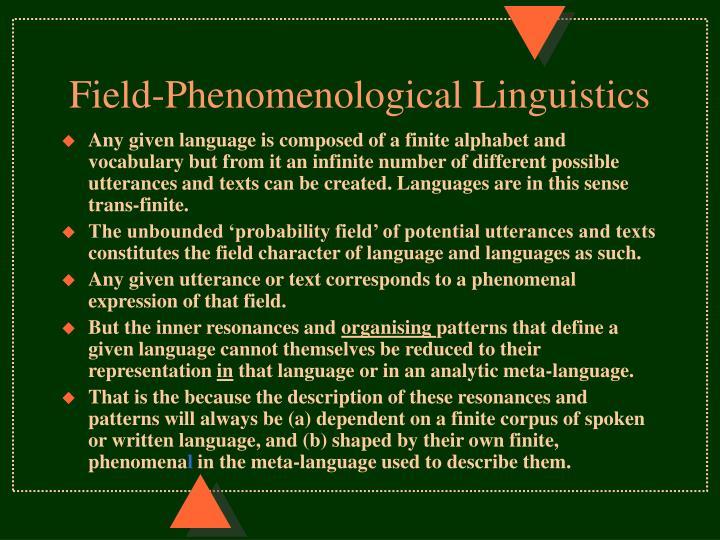 Field-Phenomenological Linguistics