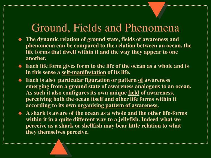 Ground, Fields and Phenomena