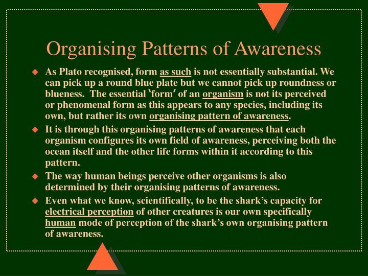 Organising Patterns of Awareness