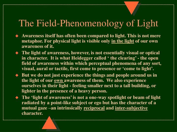 The Field-Phenomenology of Light