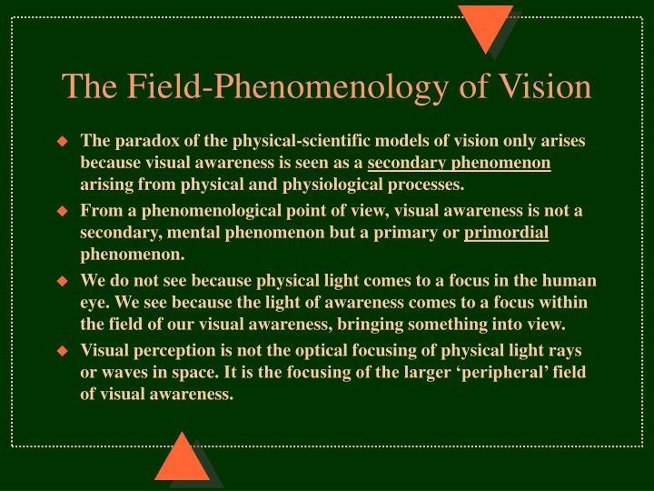 The Field-Phenomenology of Vision