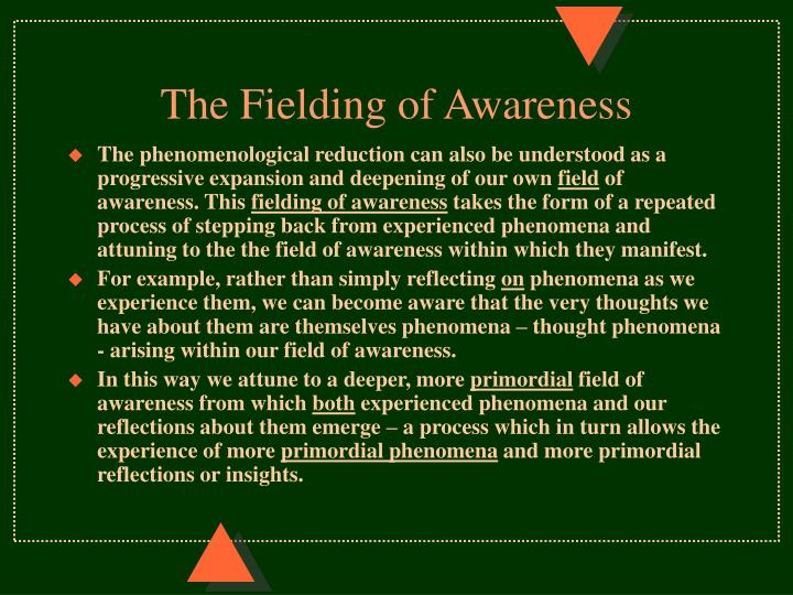 The Fielding of Awareness