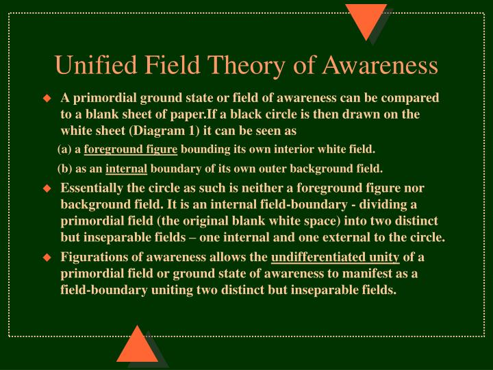 Unified Field Theory of Awareness