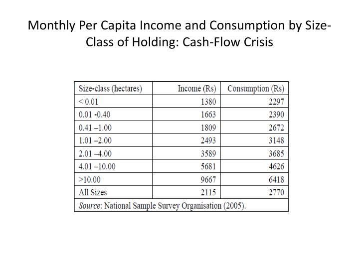Monthly per capita income and consumption by size class of holding cash flow crisis