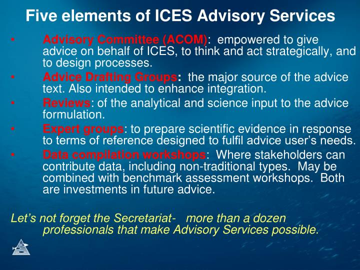 Five elements of ICES Advisory Services