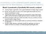 sylwadau clo r cenhedloedd unedig 2008 sydd fwyaf perthnasol i gynhalwyr maeth 2