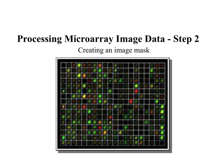 Processing Microarray Image Data - Step 2