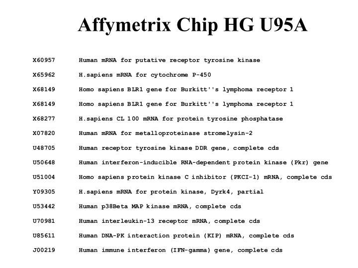 Affymetrix Chip HG U95A