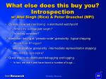 what else does this buy you introspection w atul singh rice peter druschel mpi