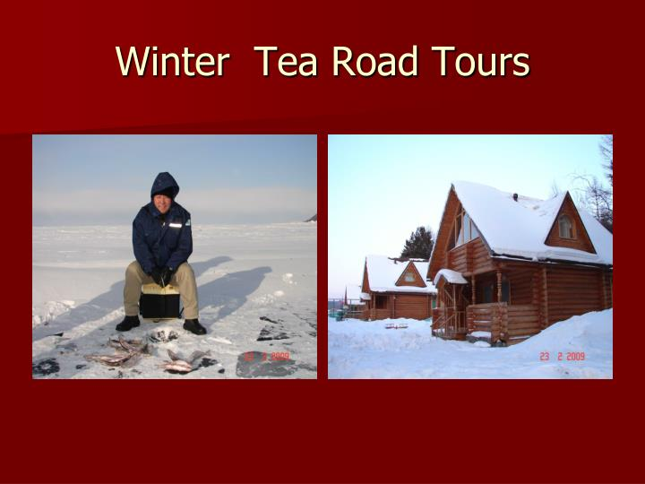 Winter  Tea Road Tours