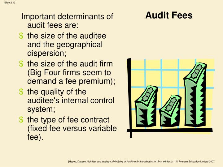 Audit Fees
