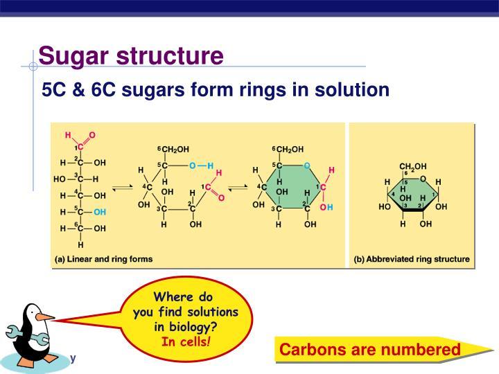Sugar structure