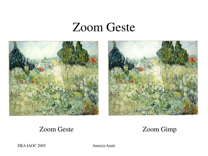 Zoom Geste