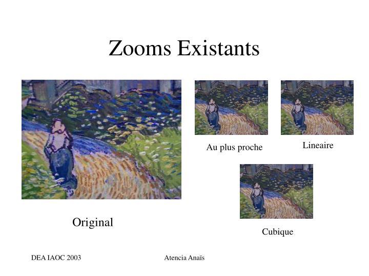 Zooms Existants