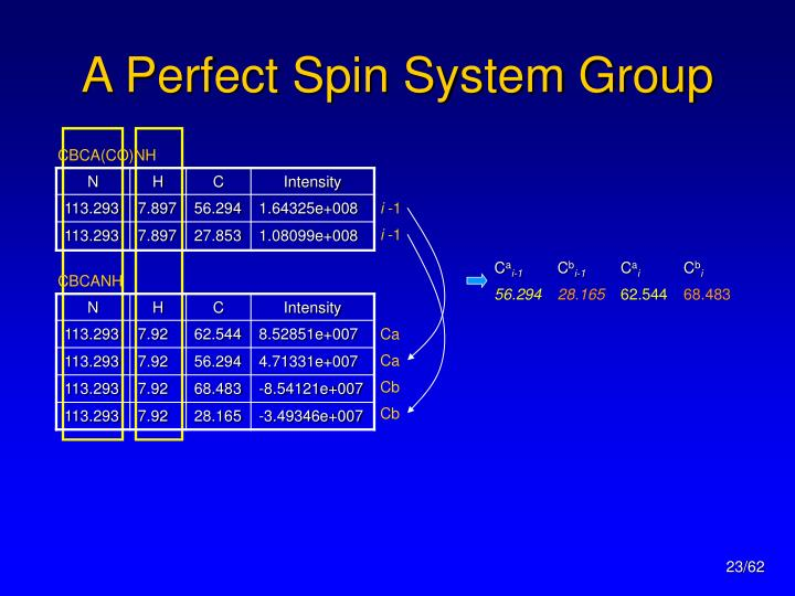A Perfect Spin System Group