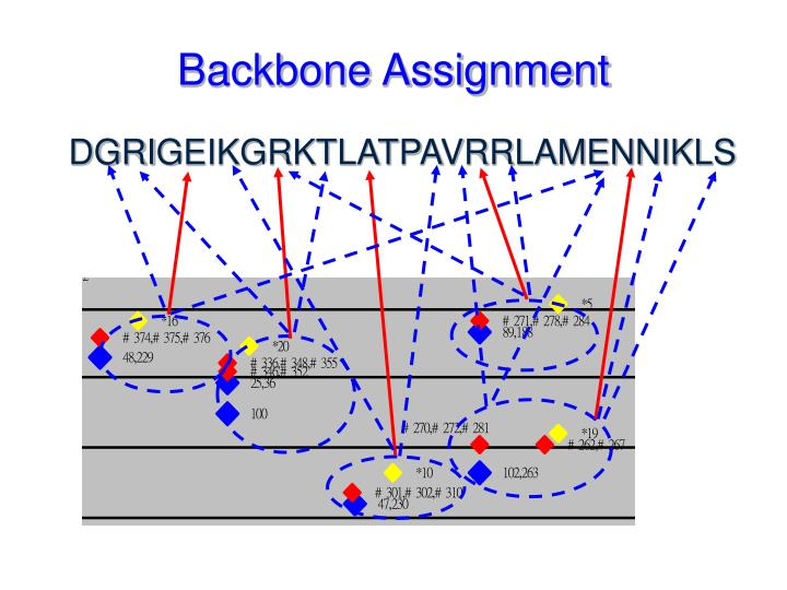 Backbone Assignment
