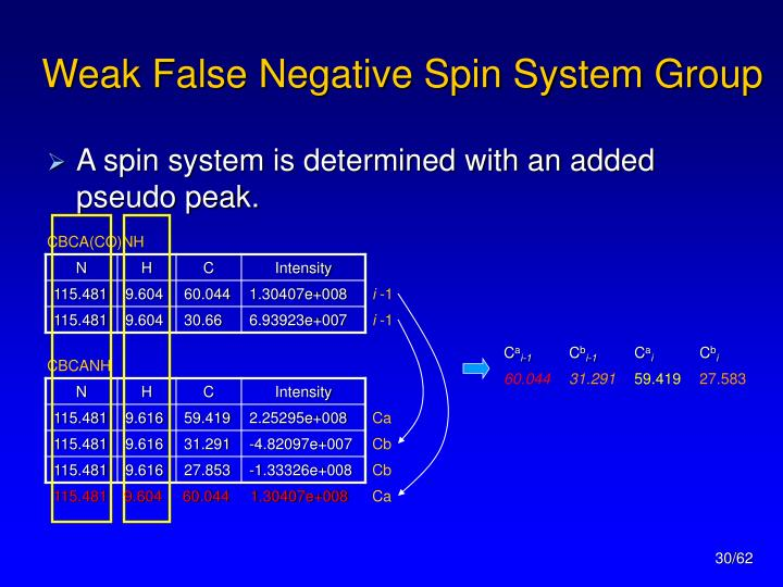 Weak False Negative Spin System Group