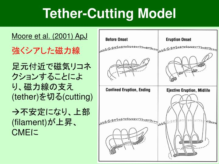 Tether-Cutting Model