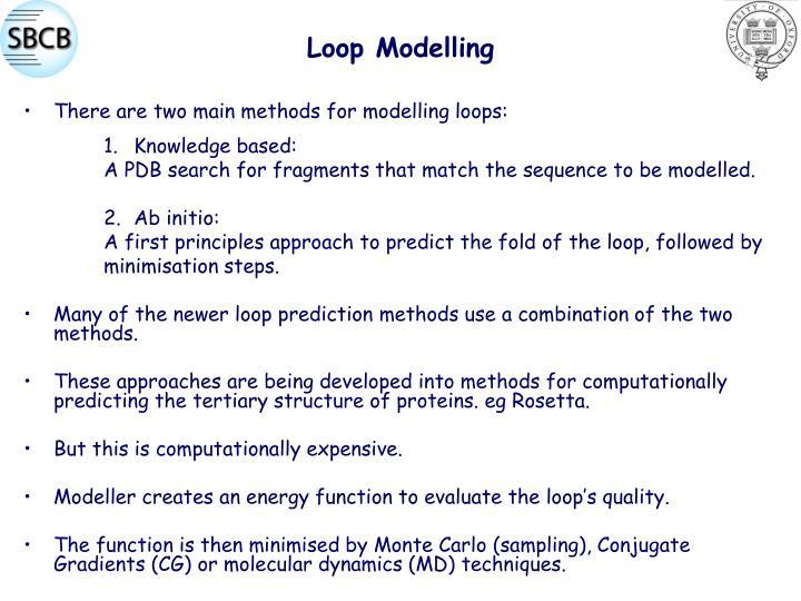Loop Modelling